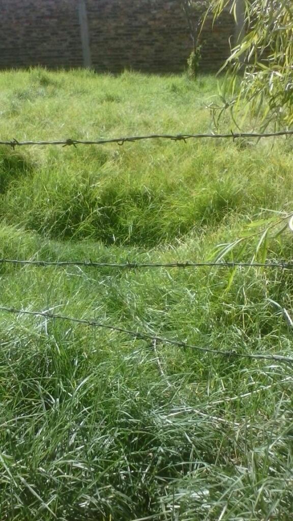 Vendo lotes de terreno con servicios de agua luz electrica
