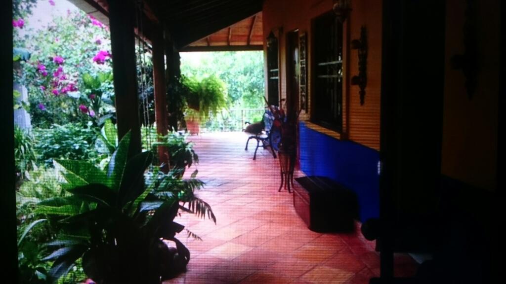 Vendo Finca Doble Propósito con Hermosa Cabaña Y Piscina en San Faustino, 46 Hectáreas