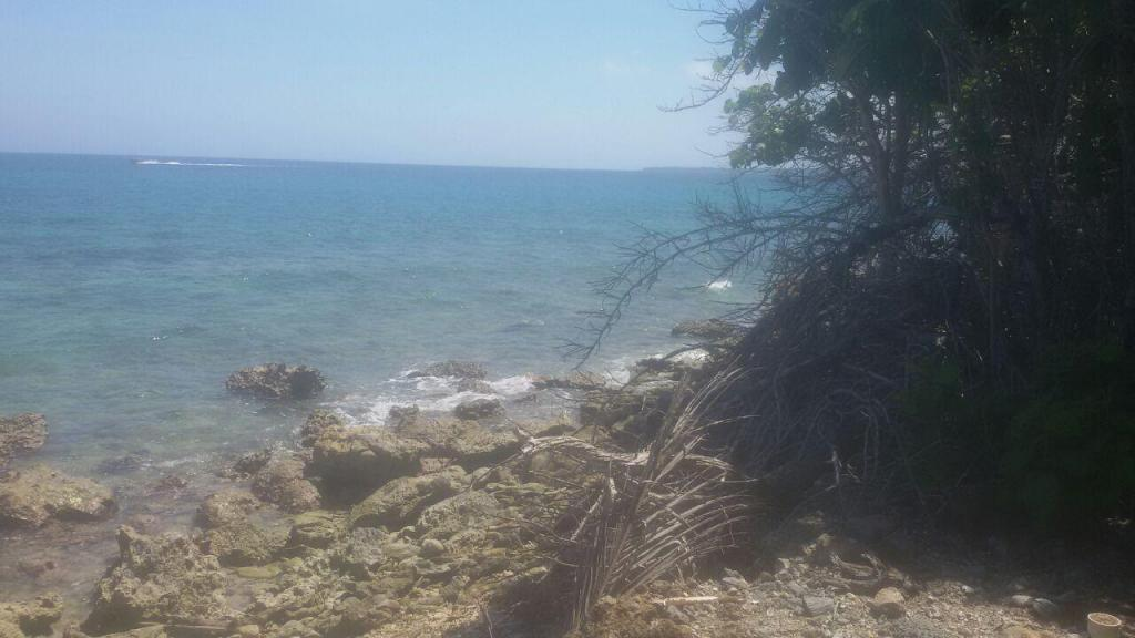 Lote en venta en isla baru de cartagenta 17000000000