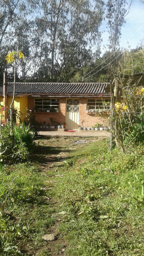 Casa Lote Rural